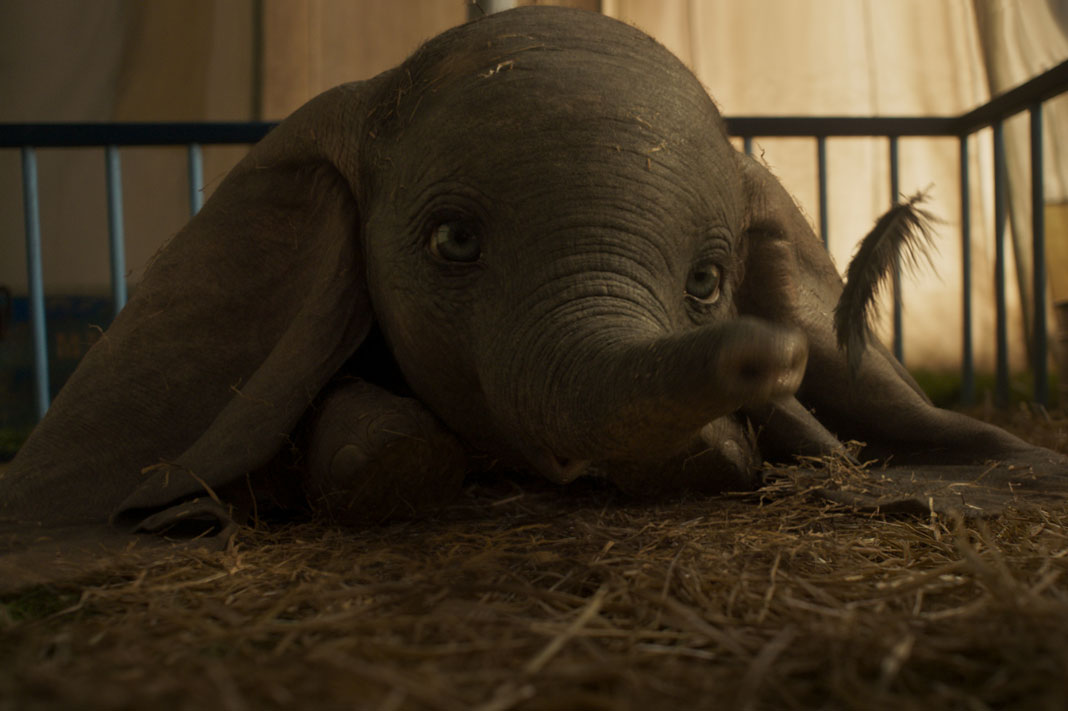 Why is Disney's Dumbo Being Reimagined Now?