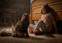 Pet Sematary Review: New Chills, Same Sematary