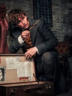 Fantastic Beasts 3 Production on Hold After Positive Covid Test