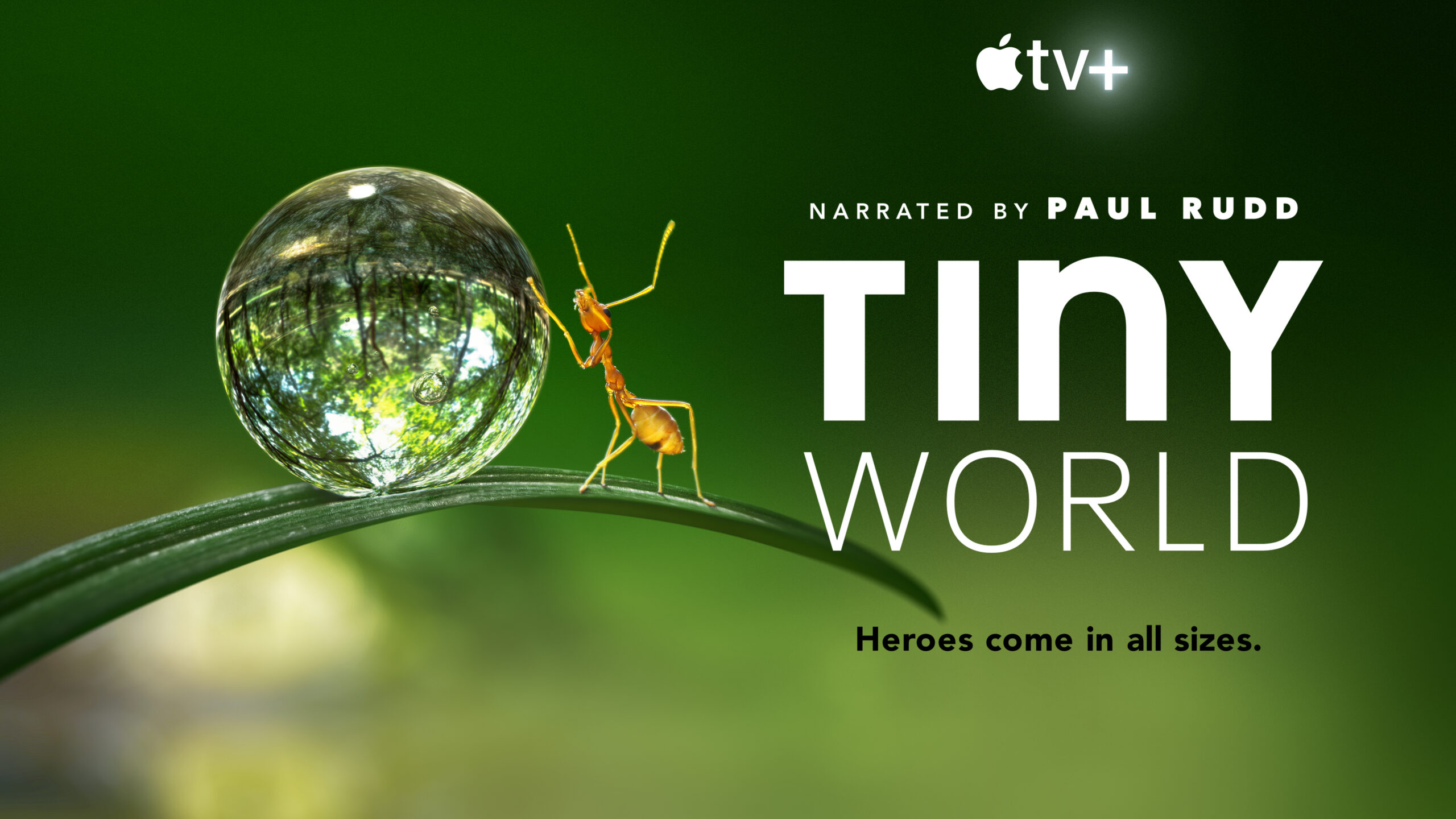 Apple TV+ Announces The Year Earth Changed with David Attenborough