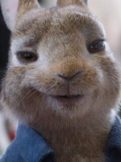 The Final Peter Rabbit 2: The Runaway Trailer