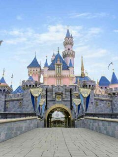 Castles, Monorails and More Join Disney+ Series Behind the Attraction