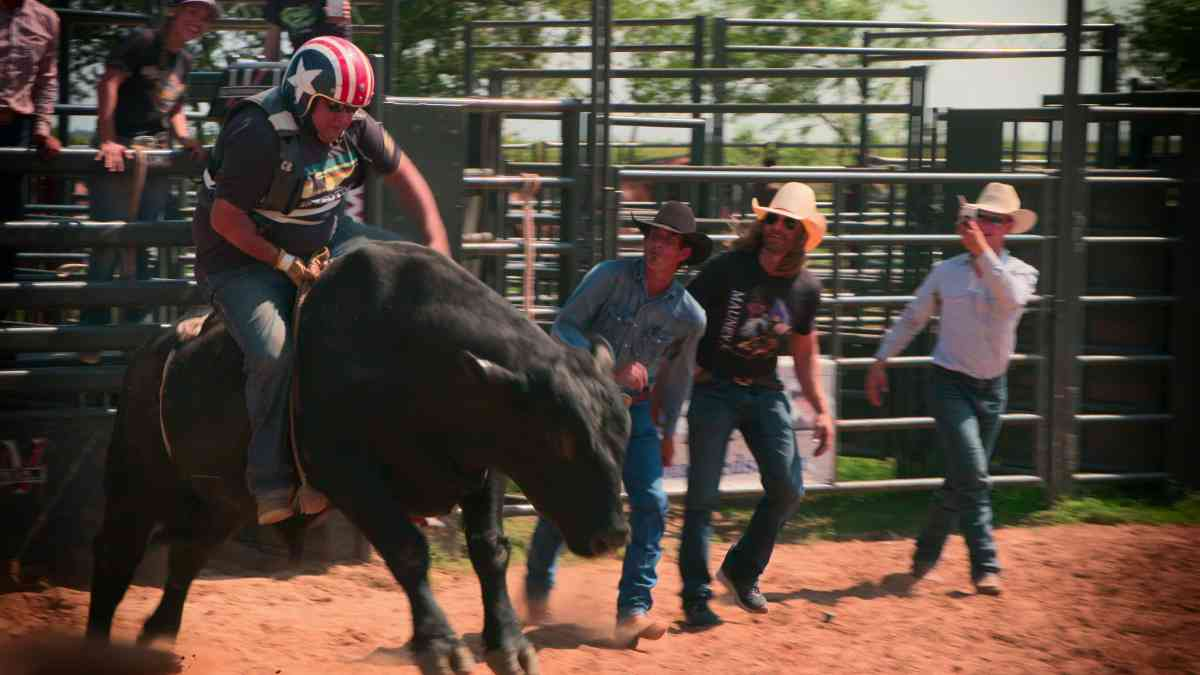 How to Be a Cowboy - Netflix September 2021