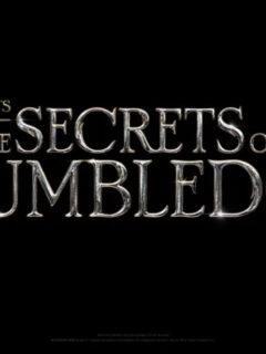 Fantastic Beasts: The Secrets of Dumbledore Release Set