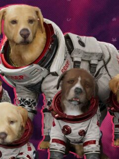 Cosmo Cinematic Revealed for Marvel's Guardians of the Galaxy